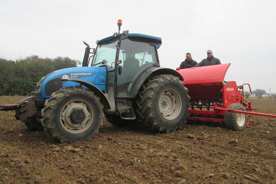 Ove godine seju se dve nove vrste pšenice
